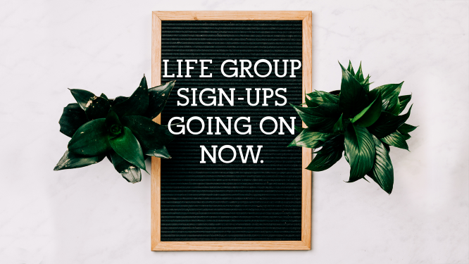 Life Group Sign-Ups